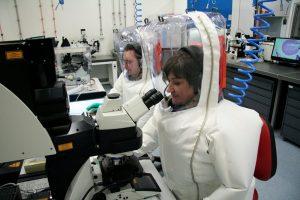 Coronavirus, la recherche mondiale …