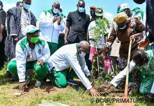 Journée nationale de l'arbre 2021 : Mettre en terre 10 millions de plants